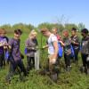 Coastal Groups Complete Another Major Reforestation Effort