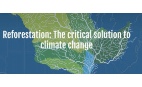 Reforestation: The Critical Solution to Climate Change
