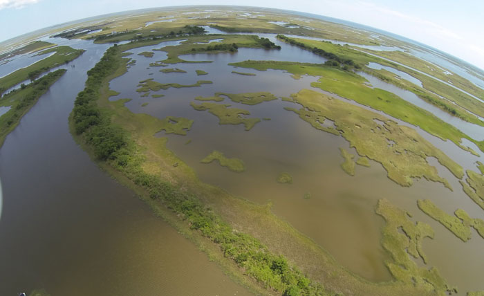 Louisiana Wetlands Restoration Project Offers Corporate Investors a Social Return